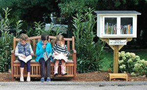 biblioteca libre little free library